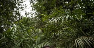 La selva amazónica brasileña podría perder a su más generoso protector: Noruega