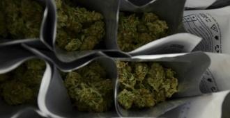 Reglamentan programa que regula el uso medicinal de la marihuana en Argentina
