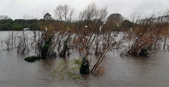 Aumenta a 7406 el n�mero de personas desplazadas por las inundaciones