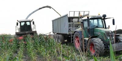 La soja y el maíz suben en Chicago y el trigo cae