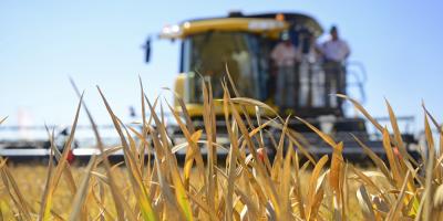 Concretan comercialización de zafra de arroz