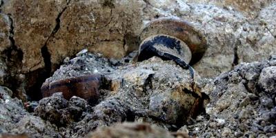 Guatemala recuperó 22 piezas arqueológicas mayas en 2016