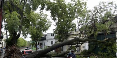 Los vientos causaron derrumbes en dos casas en Melo