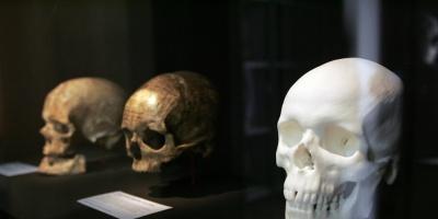 El humano llegó a América 115.000 años antes de lo que se creía
