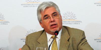 "Aguerre: ""China eligió a Uruguay como referente en producción de carne"""