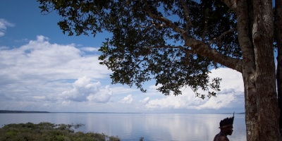 La Amazonía brasileña pierde protección y ambientalistas acusan a Temer y al agro