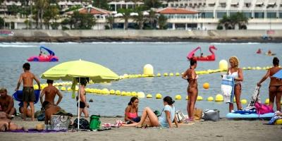 Buscan detener proliferación de microalga tóxica en Islas Canarias