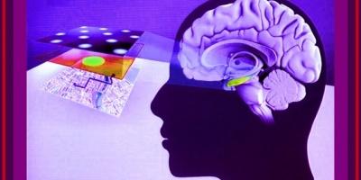 Una hormona abre una nueva esperanza para tratar el Alzheimer