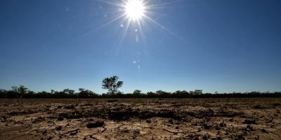 El cambio climático reducirá el rendimiento de cultivos, dice estudio