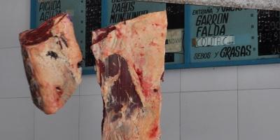 Gobierno argentino y sector de la carne analizan evolución de la producción