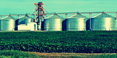 Uruguay quiere vender soja de consumo humano en China