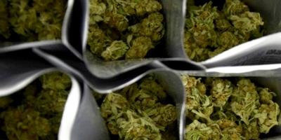Gobierno peruano promulgó ley sobre uso medicinal de la marihuana