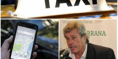 """Uber en Maldonado: De la manera en la que llegaron """"se equivocaron"""", dijo Antía"""