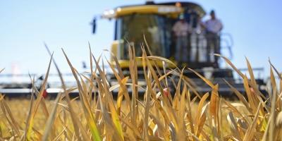 Dificultades de la sequía comenzarán a notarse en los próximos meses, advierten productores