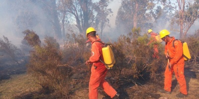Incendio de pastizales afecta al Cerro del Verdún