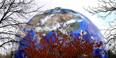Peligroso declive de biodiversidad amenaza bienestar humano, dicen expertos