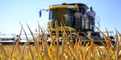 ARU: efectos de la sequía serían más graves de lo que se estimaba