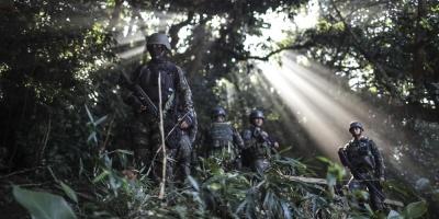 Desmantelan en Brasil banda que traficaba drogas desde frontera con Paraguay