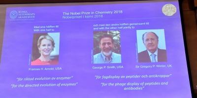 Nobel Química para Arnold, Smith y Winter por avances en desarrollo proteínas