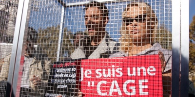 Pamela Anderson se encierra para denunciar la cría de animales en jaulas