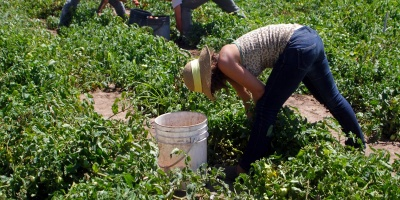 Se conmemora este lunes el Día Internacional de la Mujer Rural