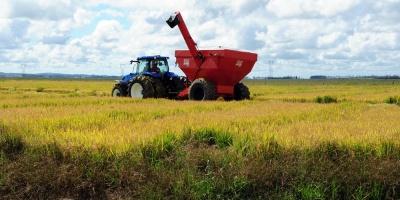 Federación Rural entiende imprescindible buscar rentabilidad de todos los sectores