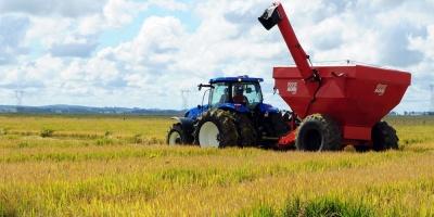 La cosecha brasileña aumentará un 1,7 % en Brasil el próximo año