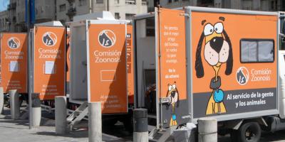 Realizarán nuevas jornadas de castración de canes desde el lunes