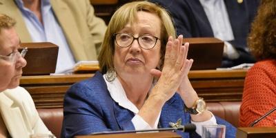Muñoz compareció en el Parlamento por el Gurvich