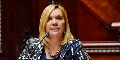 """Partido Nacional niega que esté """"poniéndole palos en la rueda"""" al nuevo emprendimiento de UPM como dijo el ministro Murro"""
