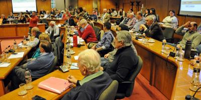 Bancada de senadores del FA definirá tratamiento de Ley Orgánica Militar