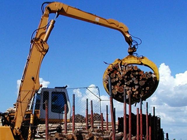 Empresa forestal estadounidense se desprende de su negocio en Uruguay
