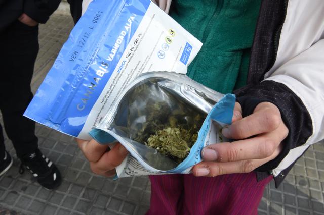 Cerrarán cuentas de empresas vinculadas con marihuana en Uruguay
