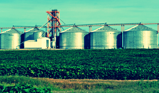 Aguerre confirmó que Brasil levantó trabas a lácteos uruguayos