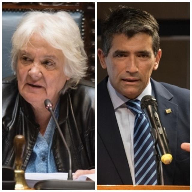 Subsidio: Topolansky pedirá explicaciones al Tribunal de Cuentas