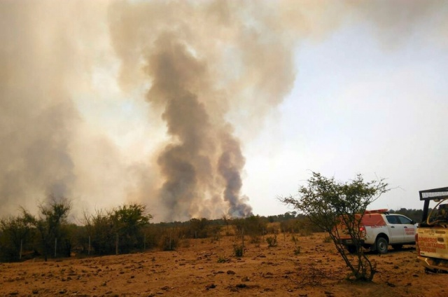 Querían hacer una carnita asada y quemaron mil hectáreas