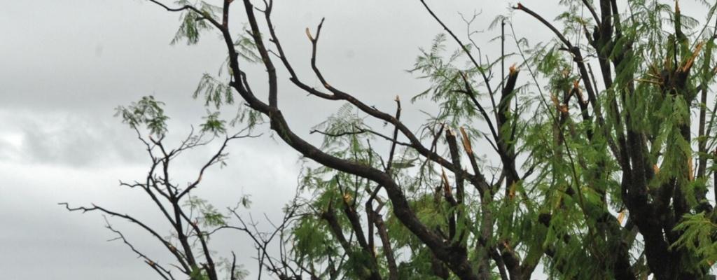 Destrozos por fuertes vientos en Montevideo