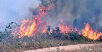 """Macri, """"alarmado"""" por los incendios en la Amazonía, ofrece ayuda de Argentina"""