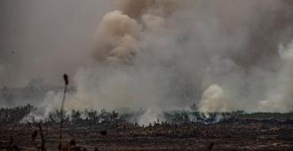 """UE pide evitar """"interpretaciones nacionalistas"""" en debate ambiental en Brasil"""