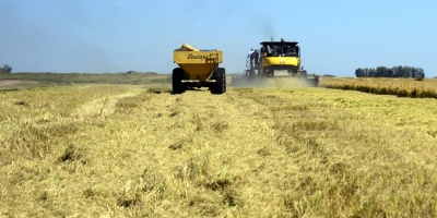 Gremiales agropecuarias esperan respuesta ante planteo en Parlamento