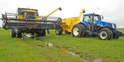 Prevén menor zafra de arroz debido a factor climático