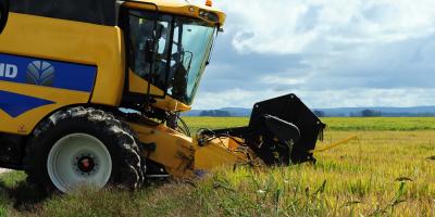 Productores panameños exigen soluciones para problemas del agro