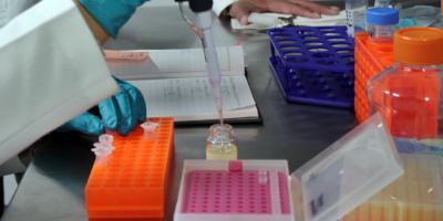 La Nasa cataloga los microbios y hongos de la Estación Espacial