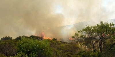 Un incendio presuntamente intencional afectó a unas 25 mil hectáreas