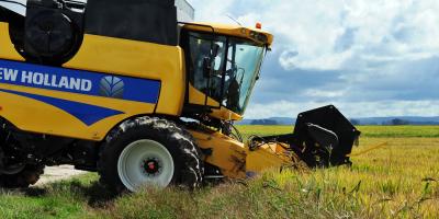 La ONU lanza década de agricultura familiar en su lucha contra pobreza rural