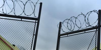 Condenado a 10 meses de cárcel en Cuba por destruir plantas en la vía pública
