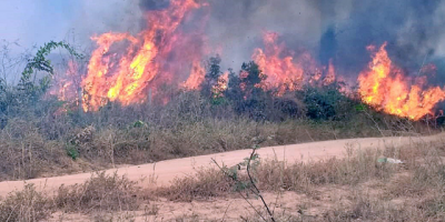 Argentina envía 200 bomberos a Amazonía para ayudar en extinción de incendios