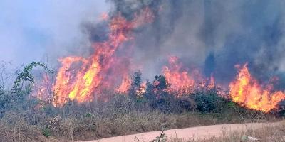 Brasil prohíbe por 60 días el uso de fuego para preparar siembra en Amazonia
