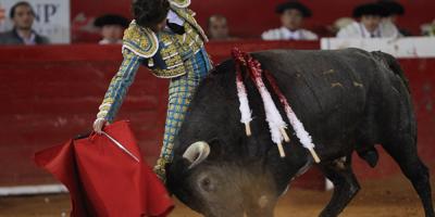 El 59 % de mexicanos está a favor de prohibir las corridas de toros