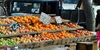 Naranjas rechazadas en Italia se podrían comercializar cuando las devuelvan